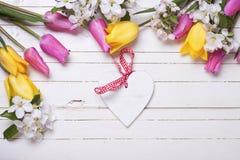 Coeur décoratif, fleurs de pommier et tulipes lumineuses sur le petit morceau Images libres de droits