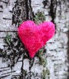 Coeur décoratif sur l'arbre de bouleau Images libres de droits