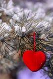 Coeur décoratif sur la branche couverte de neige de sapin Carte de jour de Valentine Images libres de droits