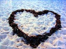 coeur d'élément de conception de plage romantique Composition romantique avec l'espace des textes Image libre de droits