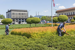 Coeur d'Alene, USA - May 3, 2016: Workers gardening and mowing shrubs by resort in downtown city Royalty Free Stock Photography