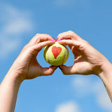 Coeur d'amour de balle de tennis - tenu à disposition par la femme Image stock