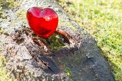 Coeur d'amour de jour de valentines avec la lumière du soleil dehors Image libre de droits