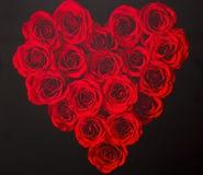 Coeur d'amour des roses Image libre de droits