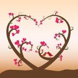 Coeur d'arbre Images stock