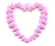 Coeur d'orchidée Images stock