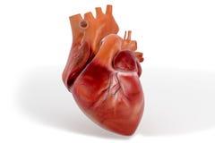 coeur 3D texturisé Photographie stock libre de droits