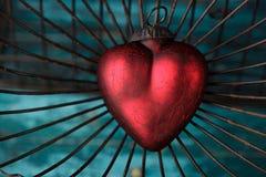 Coeur dans la cage Photos stock