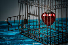 Coeur dans la cage Photo stock