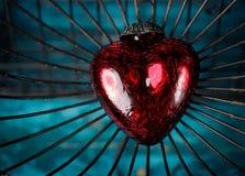 Coeur dans la cage Photo libre de droits