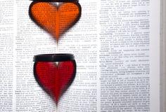 Coeur dans le livre Image libre de droits