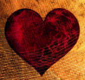 Coeur dans le réseau Photo stock