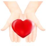 Coeur dans les heands affectueux sur le fond blanc Photographie stock libre de droits