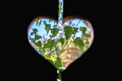 Coeur dans un conseil en bois Images stock