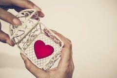 Coeur dans une cage Image libre de droits