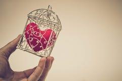 Coeur dans une cage Photographie stock