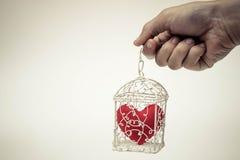 Coeur dans une cage Photo stock