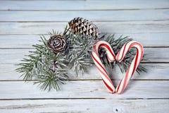 Coeur de canne de sucrerie avec le pin givré Images libres de droits