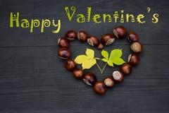Coeur de châtaigne - Valentin heureux Photos stock