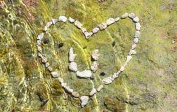 Coeur de corail Photos stock
