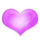 Coeur de cru. Images stock