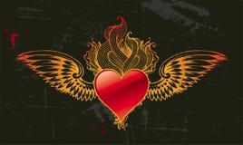 Coeur de cru Photographie stock libre de droits