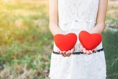Coeur de deux rouges à disposition Images stock