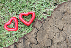 Coeur de deux rouges sur l'herbe et la terre aride Photo stock