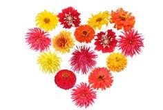 Coeur de fleur Photographie stock