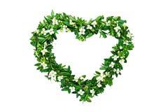 Coeur de fleur Images libres de droits