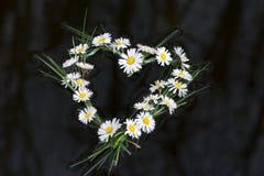 Coeur de flottement Images libres de droits