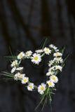 Coeur de flottement Image stock