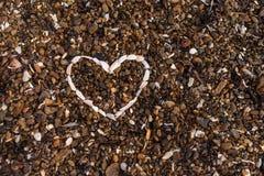 Coeur de fond de coquillages photos stock