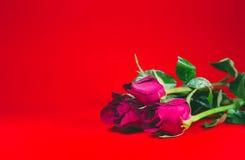 Coeur de fond, ` s de Valentine Images libres de droits