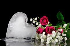 Coeur de fonte de glace avec des roses Photo stock