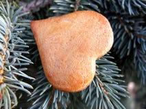 Coeur de gâteau de miel d'or de Noël Photographie stock