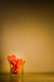 Coeur de gelée Image stock