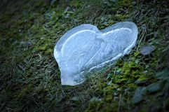 Coeur de glace, concept d'amour Photo stock