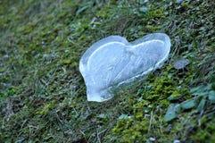 Coeur de glace, concept d'amour Image libre de droits