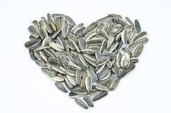 Coeur de graine de tournesol Images stock