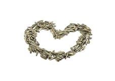 coeur de graine de tournesol Image stock