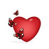 coeur de guindineaux Images stock