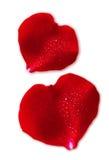 Coeur de jour du ` s de Valentin de deux rouges. Photographie stock