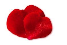 Coeur de jour du ` s de Valentin de deux rouges. Images stock