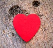 Coeur de l'amour dans la Saint-Valentin sur l'arbre Photos stock