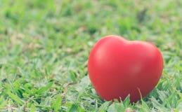 Coeur de l'amour dans la Saint-Valentin sur l'herbe verte Photos stock