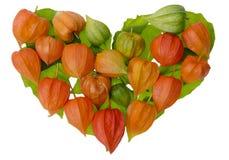 Coeur de lanterne chinoise rouge lumineuse Image libre de droits