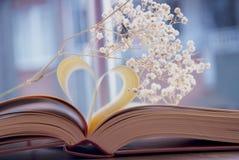 Coeur de livre Images stock