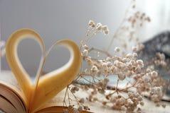 Coeur de livre Image libre de droits