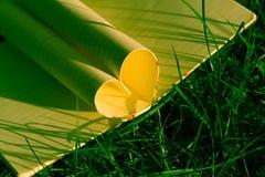Coeur de livre sur l'herbe, ton de couleur de vintage Photographie stock libre de droits